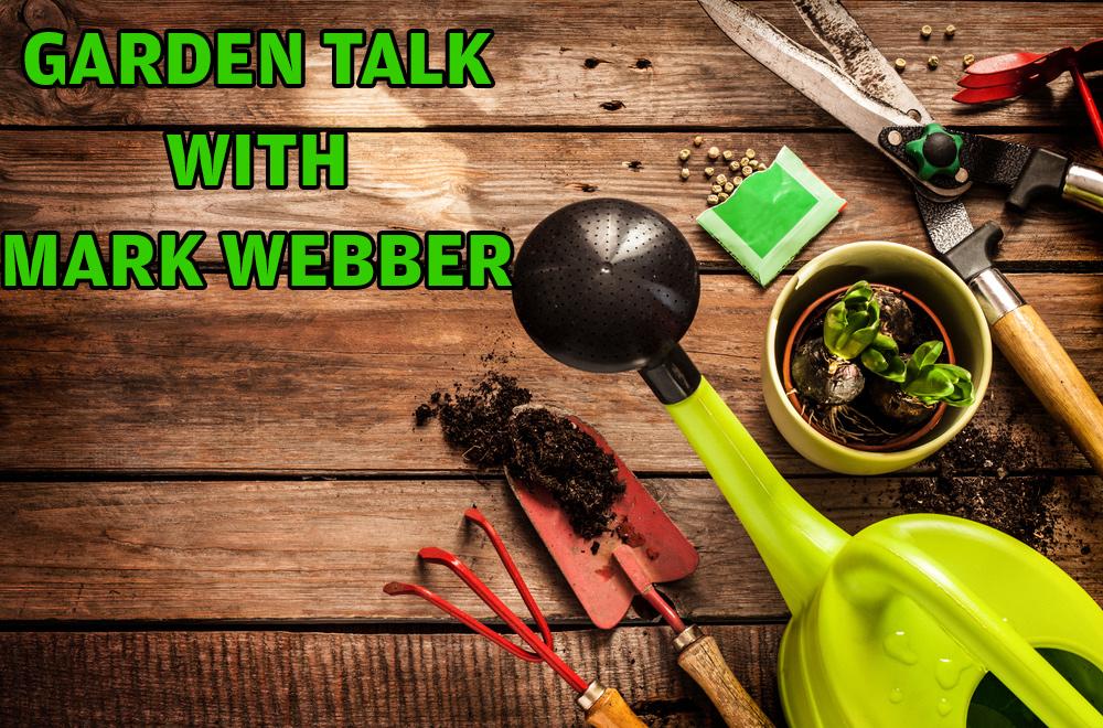Garden Talk with Mark Webber: Hour 3