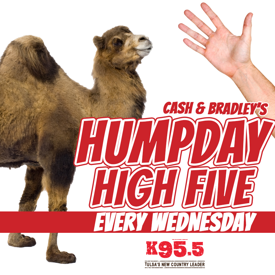 Hump Day High Five